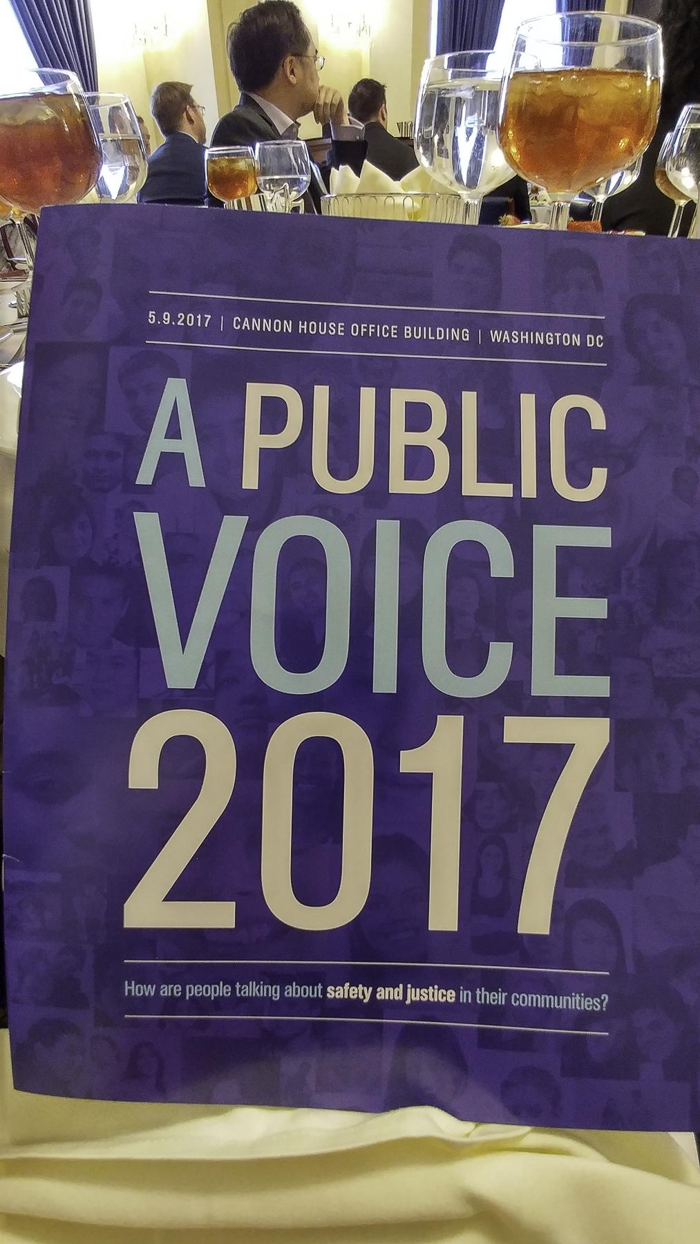 A Public Voice