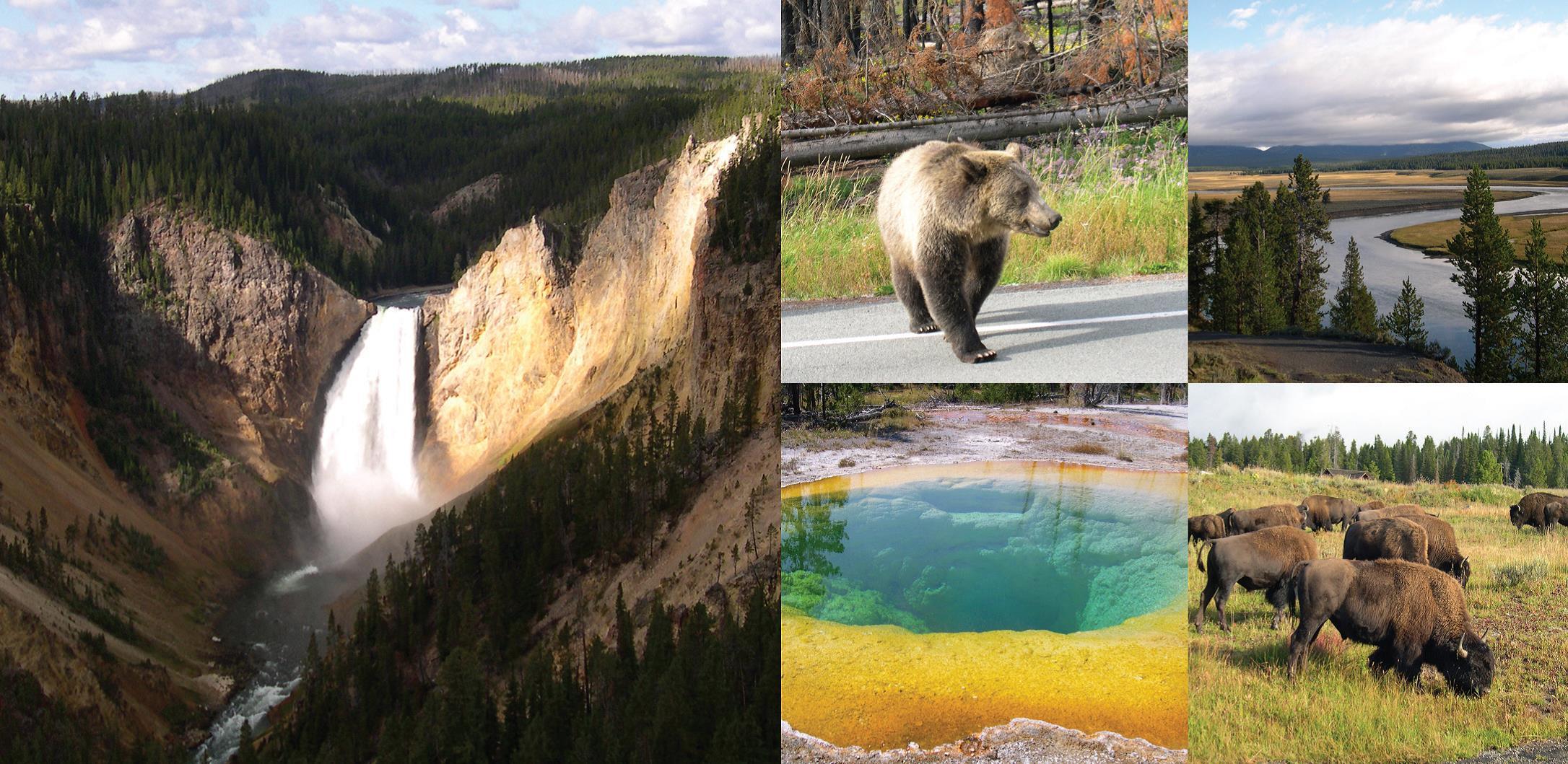 Seminar in Yellowstone National Park